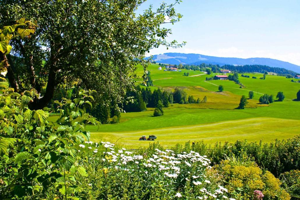 Blick vom Garten auf die Felder